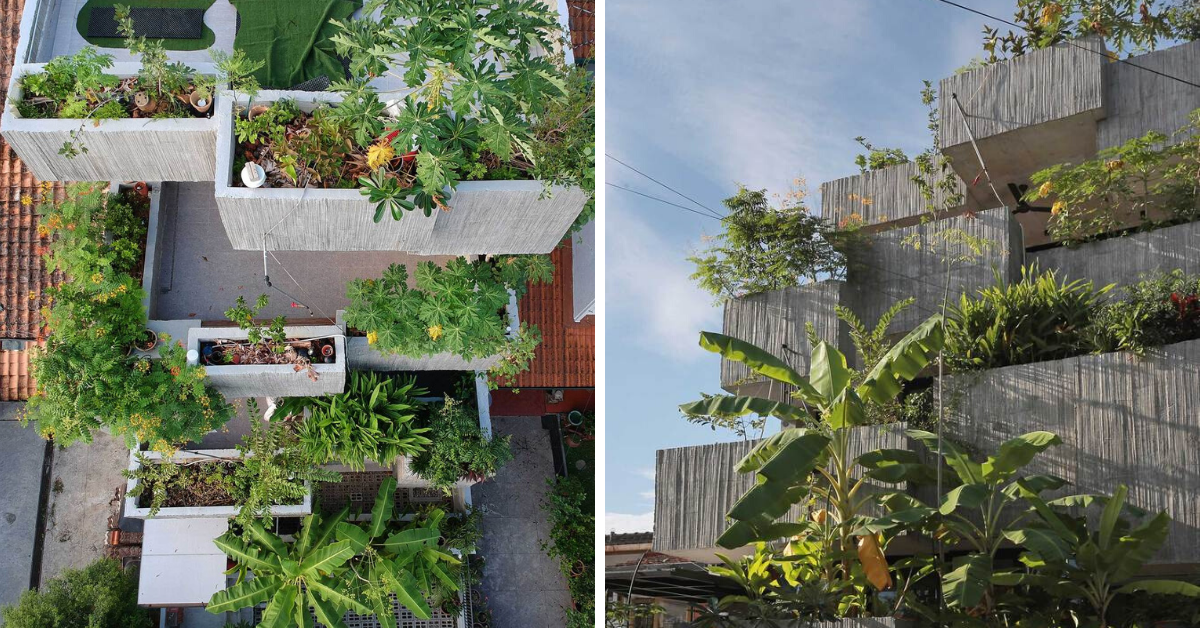 Photo of This Planter Box House In KL Is A Three-Storey House With Over 40 Types Of Edible Plants